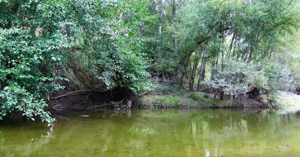 mingardo 1024x538 - La storia del fiume Mingardo - video