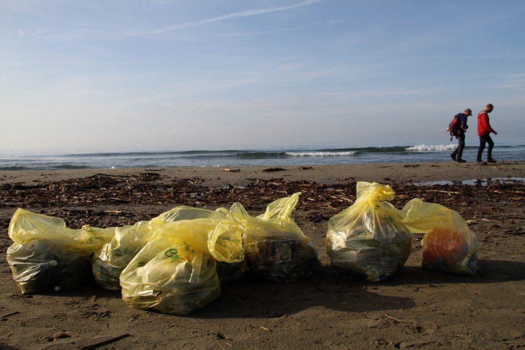 Foto raccolta spiaggia rifiuti Pietrasanta 3 - Cilento: giornata dedicata alla rimozione dei rifiuti