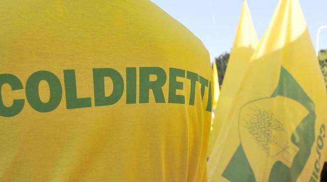 coldiretti 10935.660x368 - Coldiretti: operazione di solidarieta' per Salerno e provincia