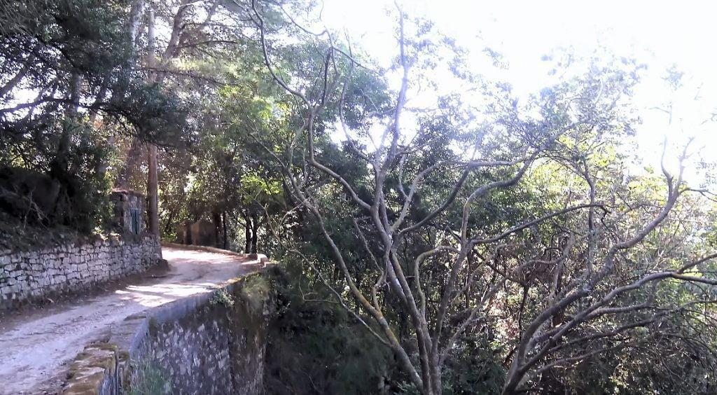 vallone 1024x564 - S. Marco di Castellabate, fondi per la messa in sicurezza del sentiero che porta a Licosa - il video della passegiata