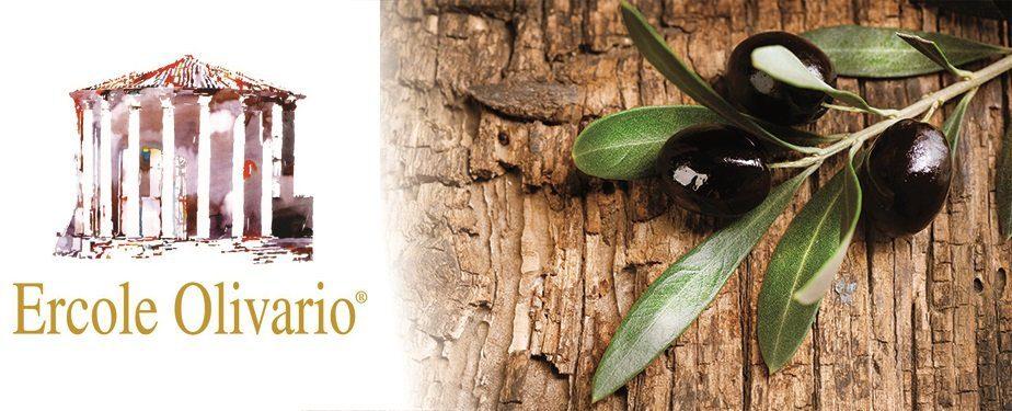 Anche l'olio di Serre in finale al Concorso nazionale Ercole Olivario