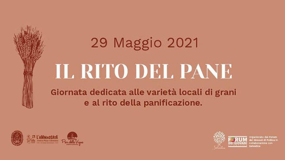 """Pollica, """"IL RITO DEL PANE"""" – 29 maggio 2021"""