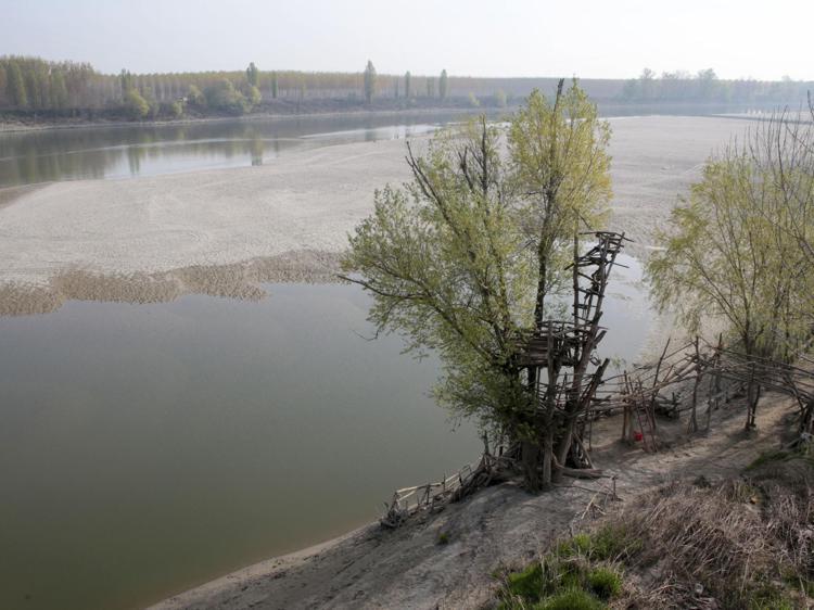 Clima, lo studio: 150 anni di cambiamenti hanno modificato biodiversità in Italia